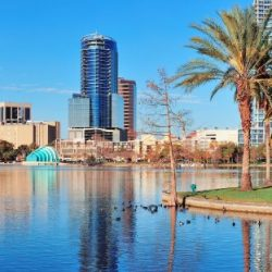 Orlando Tourists Seek The Mouse and Airbnb Sublet