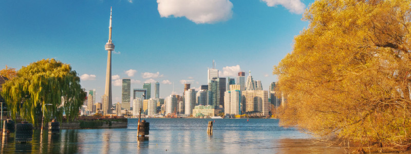 New Toronto law to monitor rentals